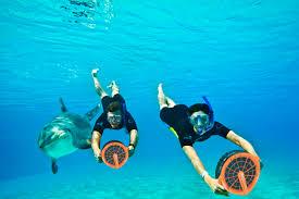 aquaventure at atlantis paradise island bahamas swimming with