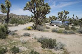 Joshua Tree Campground Map Guide To Camping In Joshua Tree National Park Outdoor Project