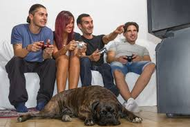 Halloween Day In Usa Here U0027s How Many People Are Playing Games In America Polygon