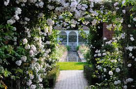 most beautiful home gardens in the world david austin rose gardens