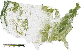 us state abbreviations map forest cover by state in the united states