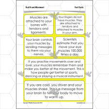 health and movement skeletons and muscles ks2 complete series