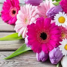 home christchurch florist garden city florist
