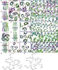 de novo design of protein homo oligomers with modular hydrogen