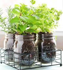 indoor kitchen garden ideas impressive herb garden ideas indoor herb garden ideas