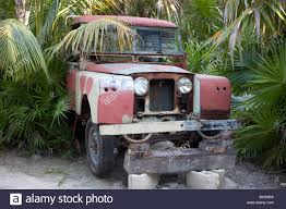 old land rover old land rover abandoned in a seaside jungle in mexico stock photo