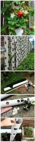173 best diy garden ideas images on pinterest gardening
