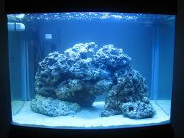 Marine Aquascaping Techniques How U0027s This Aquascape Nano Reefs Gallery Nano Reef Com