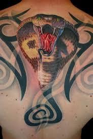 65 best 3d snake tattoos with bear images on pinterest snake