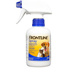 10 best flea treatments for dogs u0026 cats