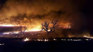 Wildfires In Colorado by Wildfires Ravage 1 Million Acres Naco