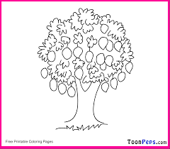 parts of the tree clipart 58