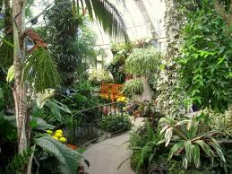 Washington State Botanical Gardens File Gaiser Conservatory Manito Park Img 6982 Jpg Wikimedia