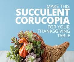 cornucopia decorations succulent filled cornucopia thanksgiving centerpiece idea