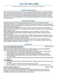 marketing executive resume marketing executive resume resume sle
