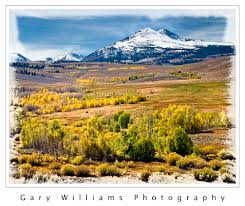 fall color gary williams photography 2