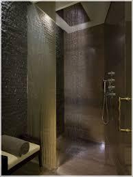 bathroom shower idea black wall and gorgeous shower idea for stylish
