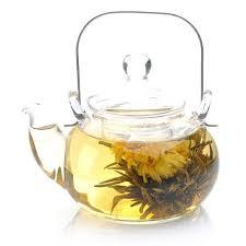 Jasmine Tea Flowers - 42 best scented tea images on pinterest fresh flowers flower
