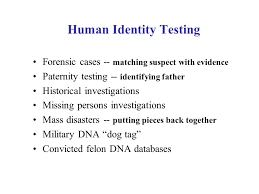 brief history of forensic dna typing ppt video online download