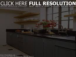 47 simple kitchen design simple kitchen designs in india 3