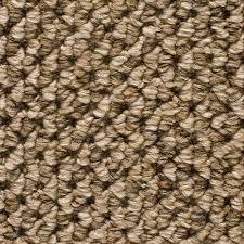 home decorators collection carpet sample sutton color quebec