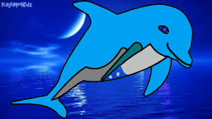 color dolphin for children coloring page kindergarten toddlers