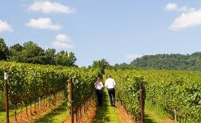 Virginia Bed And Breakfast Winery Charlottesville Virginia Luxury Hotels Albemarle Estate At Trump