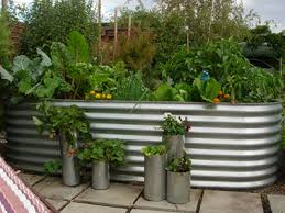 How To Start A Garden Bed Plush Design Ideas How To Start A Garden Bed Beautiful Decoration