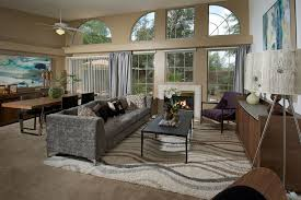 Couristan Area Rugs Contemporary Living Room With Velvet Sofa Metal Fireplace