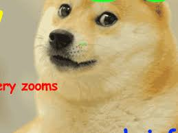 Doge Wow Meme - shibe doge meme zoom to infinity gif wow