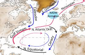 Gulf Stream Map Unit 8 Reading