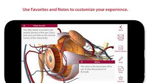 Surface Anatomy Eye Anatomy U0026 Physiology Android Apps On Google Play