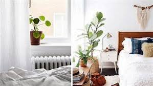 plante verte chambre à coucher plante pour chambre à coucher 5 plantes d int rieur pour d corer la