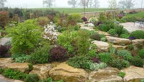 building a rockery garden landscaping ideas for rockery