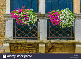 window shutters and balcony with flower box venice stock photo