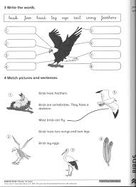 Spider Worksheets Ultimate Alliance 2 Spider Man Funny Coloring Pages Apps