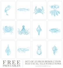 Free Printable Bathroom Art Free Printable Vintage Coastal Illustrations The Painted Hive