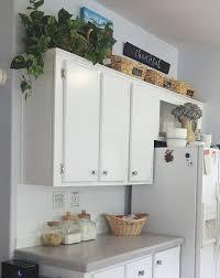 storage kitchen cabinets cost kitchen storage k s olympic nest