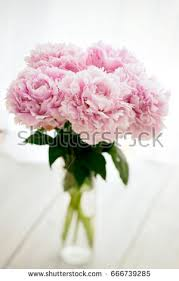 Peony Bouquet Peony Bouquet Stock Images Royalty Free Images U0026 Vectors