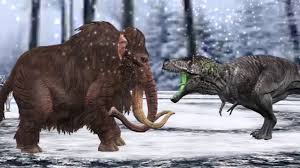 woolly mammoths die scienceoholic