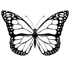 coloring pictures of small butterflies printable butterfly coloring pages butterfly coloring sheets free