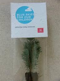 promotional giveaway seedlings 2 45 evergreen memories tree