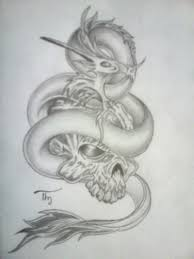 dragon on skull tattoo design in 2017 real photo pictures