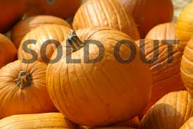 Best Pumpkin Patch Albany Ny by Ice Cream Ice Cream Cakes And Pies Bellvale Farms Creamery