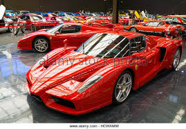 enzo for sale australia collection stock photos collection stock images