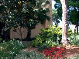 Florida Backyard Landscaping Ideas Photo Gallery Of Florida Friendly Landscaping Yards