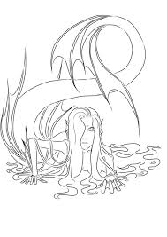 114 colouring pages images coloring books