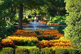Botanic Garden Glencoe Best Botanical Garden Winners 2016 10best Readers Choice Travel