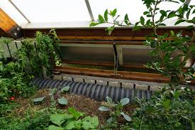 growing bananas off grid tour of a tropical greenhouse in the