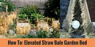 idea marvelous elevated straw bale garden bed design zumbido